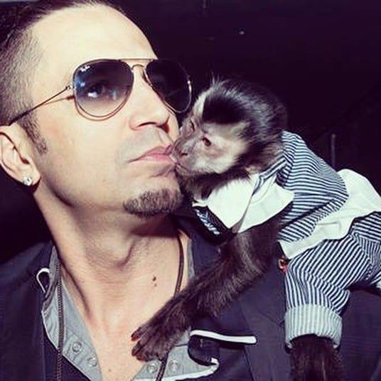 Após se emocionar com perda, Latino anuncia que vai implantar chip em macaco de estimação
