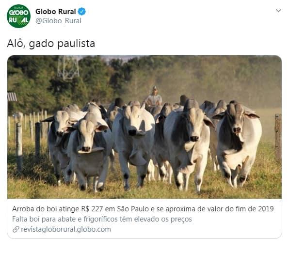 Globo Rural